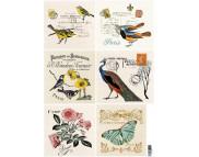"""16.8 Декупажная карта(лазерн.печать)29,5х42 """"Почтовые карточки. Птицы, бабочки, цветы."""""""