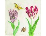 """R РАЗБИРАТЬ 27.9 Салфетка 33х33см (20шт) """"Тюльпаны и бабочка"""" кремовый"""