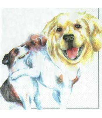 "R РАЗБИРАТЬ 7.7 Салфетка 33х33см (20шт) ""Собака и щенки"""