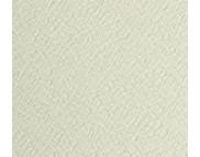 RR Бумага рисовальная (для акварели) 200гр Гознак А4 21х29,7см