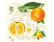 "R РАЗБИРАТЬ 25 Салфетка 33х33см (20шт) ""Апельсины"""