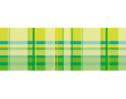 "R п Картон дизайнерский двусторонний  ""Vichy"" 300г 49,5x68см  мотив КЛЕТКА ЗЕЛЕНЫЙ"