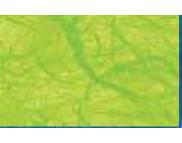 R  Натур. бумага с тутовыми волокнами 25г Ursus 50х70см  СВЕТЛО-ЗЕЛЕНАЯ