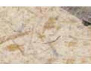 RR Натур. бумага с банановыми волокнами 35г Ursus 20х30см  БЕЖЕВАЯ